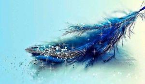 Blue Magic Feather